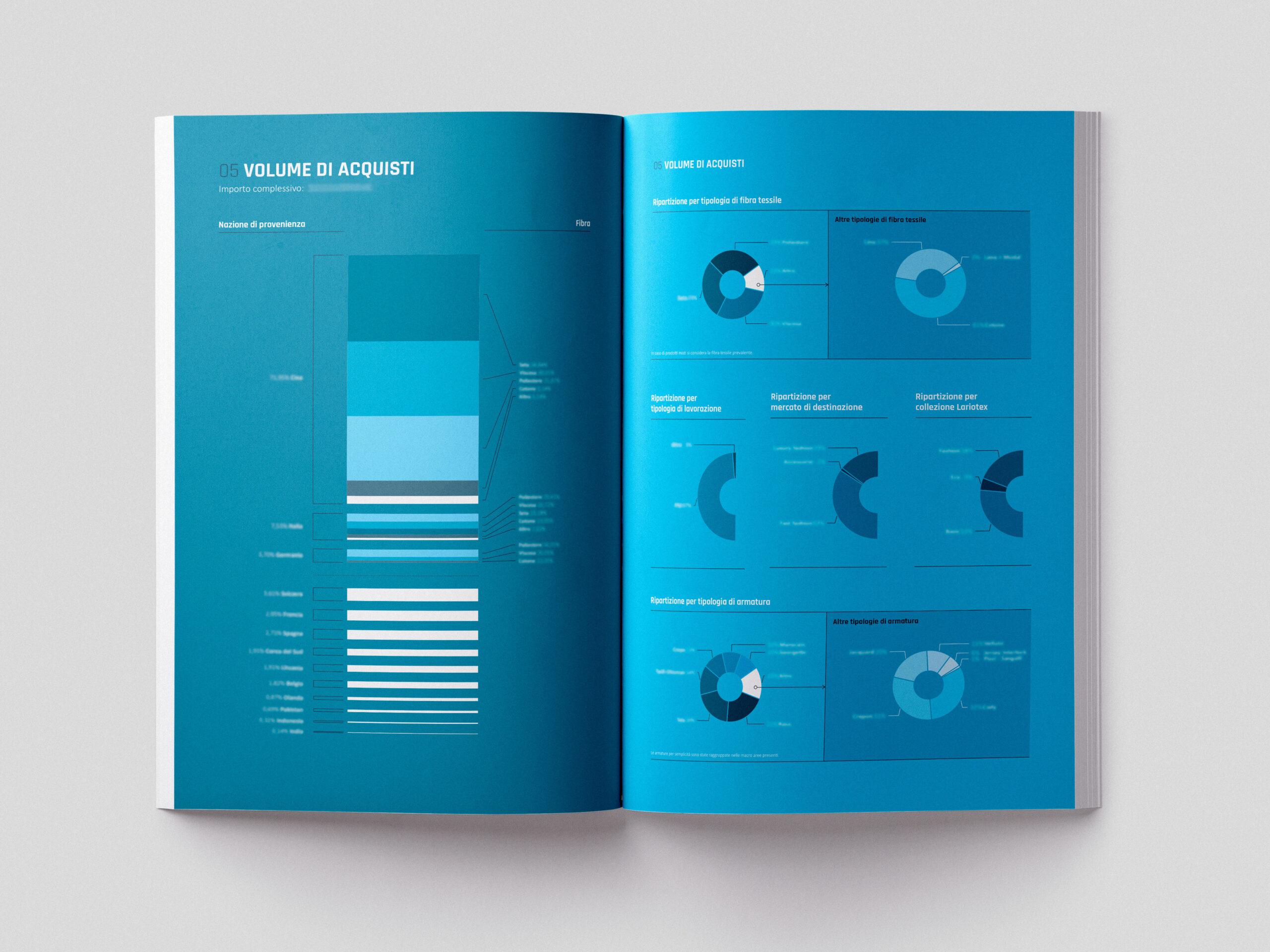 Lariotex bilancio visual data